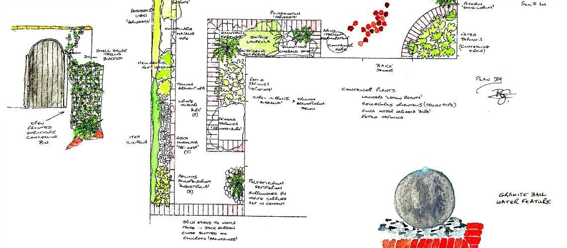 Plan for a small courtyard garden